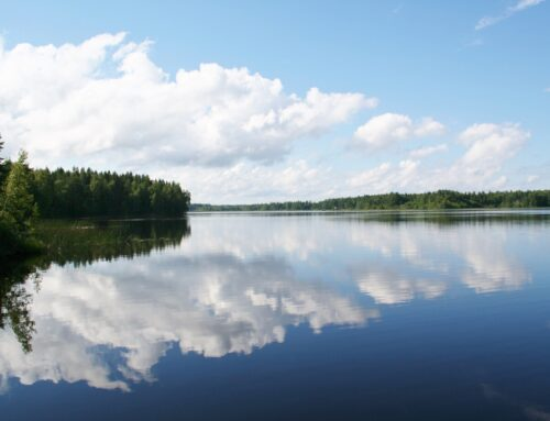 Sala: In het spoor van Zweedse zilver-zoekers